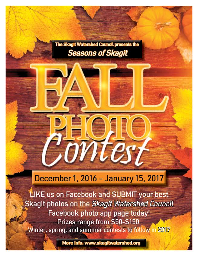 Fall Photo Facebook Contest