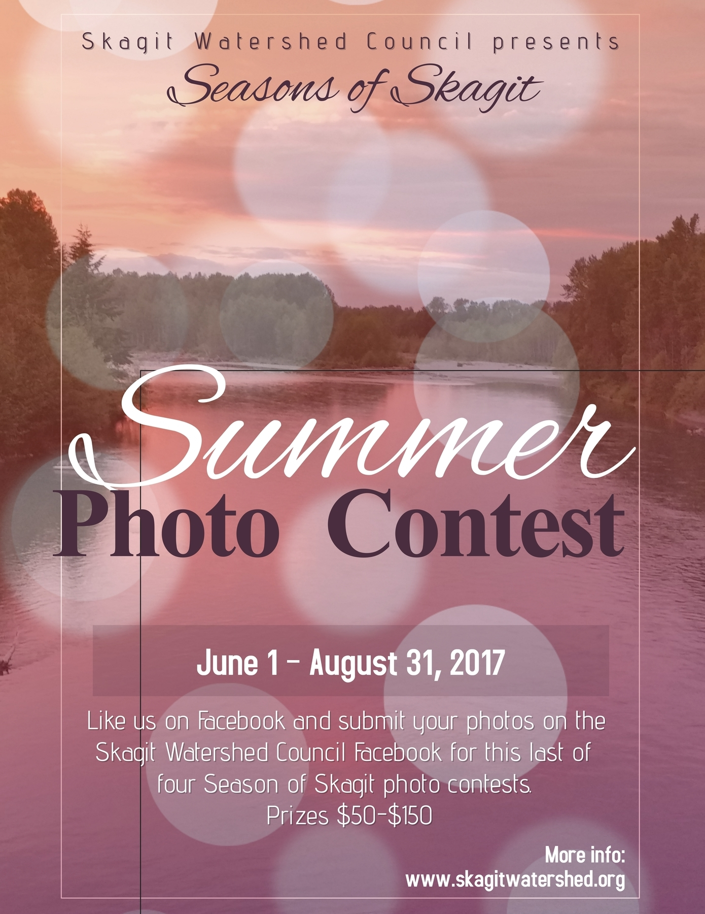 Summer Photo Contest Flyer - for social media