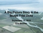 A Big Picture Story in the Skagit Tidal Delta